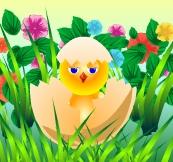 День рождения. Цыпленок в яйце